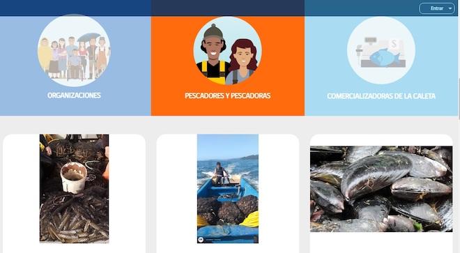 Sernapesca Biobío invita a pescadores y pescadoras a promocionar sus recursos en nuevo portal web Caleta en Línea.cl