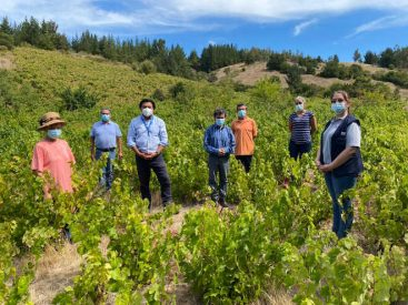 Autoridades del Agro valoraron el trabajo realizado por la agricultura familiar campesina de San Rosendoaun año del inicio de la pandemia