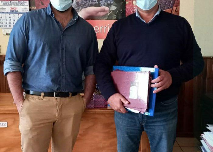 Industria de berries en el Biobío prepara periodo de poda en pandemia