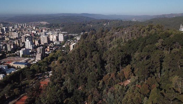 Cerro Caracol ya cuenta con página web como parte de su plan maestro