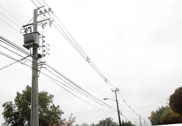 Carabineros frustra robo de cables de empresa Frontel en Ruta 5 Sur