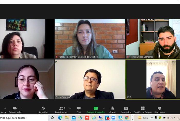 Juzgado de Letras y Garantía de Mulchén realiza reunión institucional de coordinación sobre violencia intrafamiliar