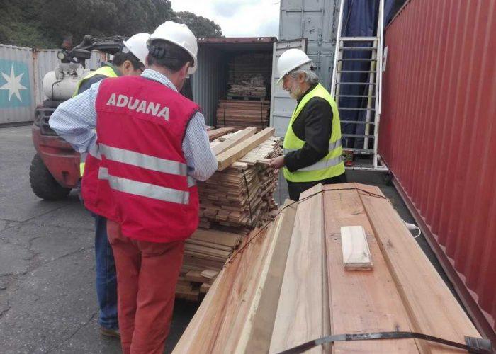 Infor es designado como autoridad científica CITES para resguardo de especies maderables de Chile