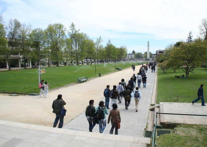 Proyecto UdeC prepara elaboración de Política de Inclusión Universitaria