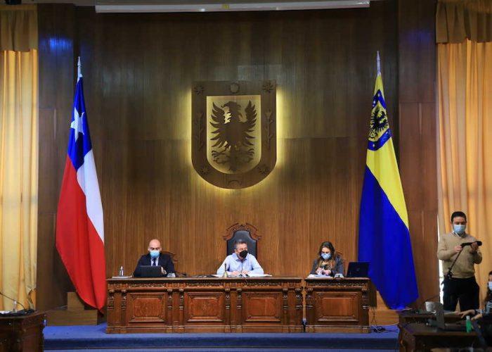 Concejo Municipal adjudica a empresa Soloverde mantención de áreas verdes de Concepción por un valor de $188.972.000