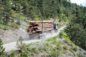 Diputado Van Rysselberghe valora aprobación de proyecto que tipifica robo de madera y emplaza a la oposición a explicar rechazo